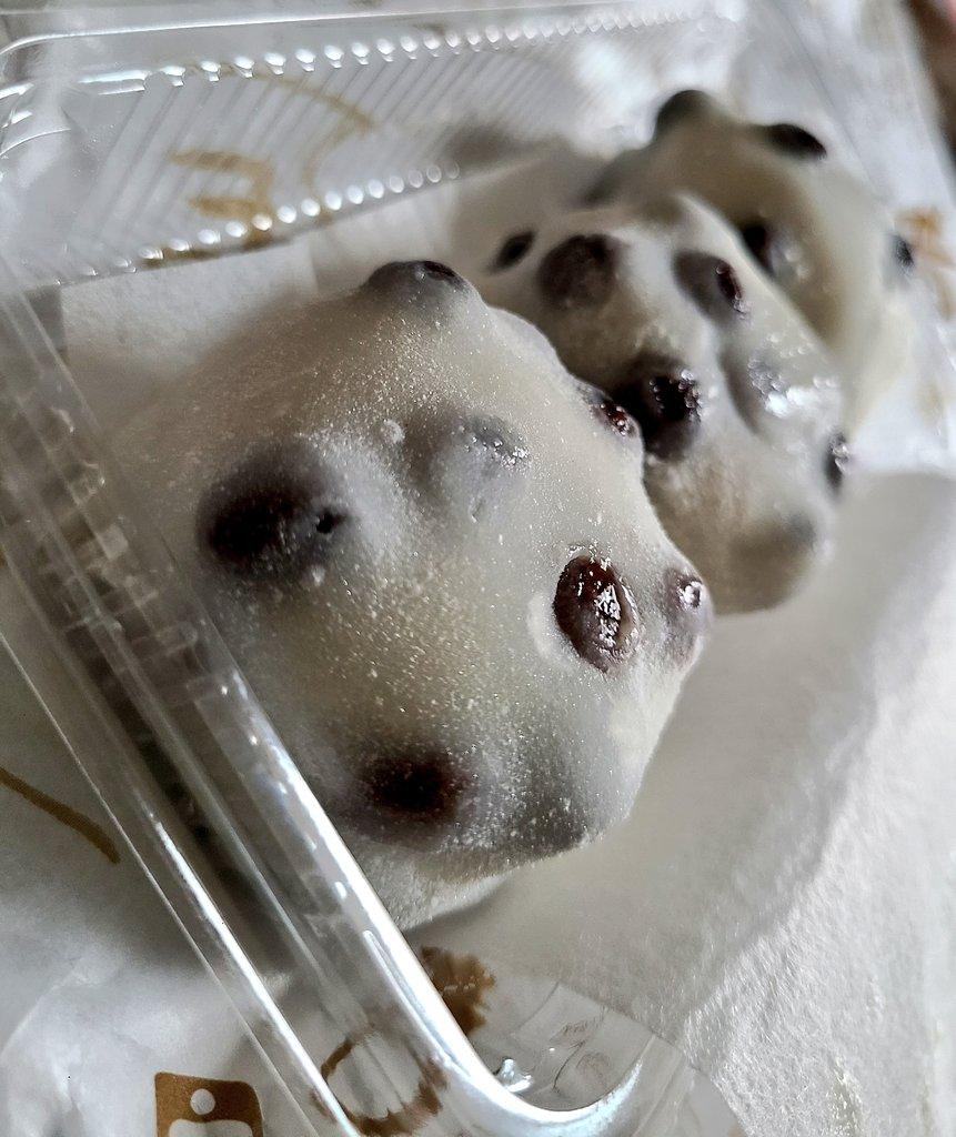 test ツイッターメディア - 今日買った出町ふたばの豆餅。 可愛い。美味。 京都行きたいな。 https://t.co/1bBxGgQd5g