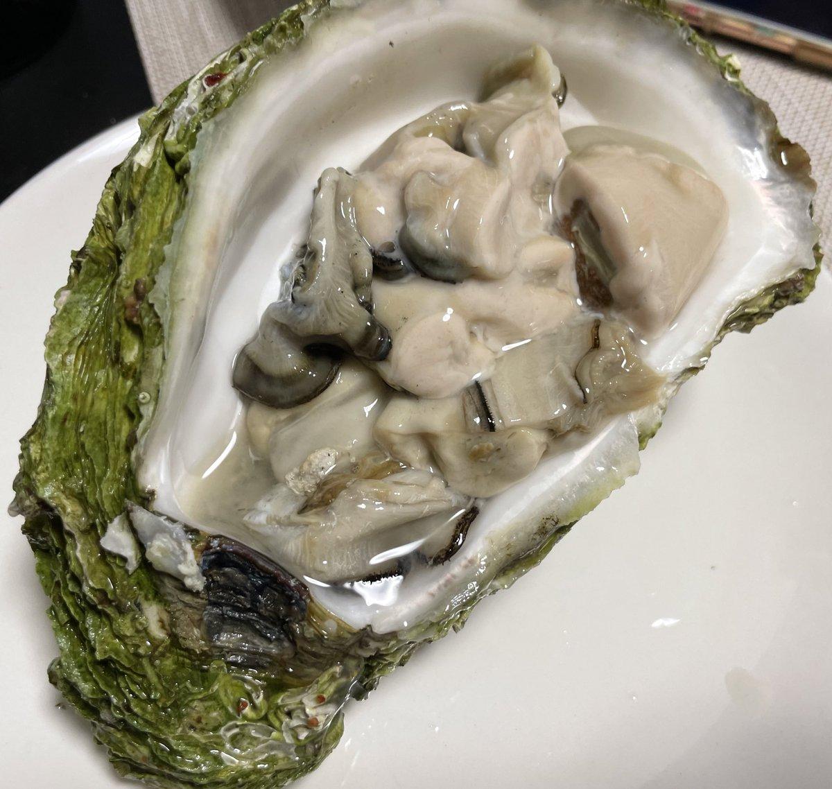 test ツイッターメディア - 岩牡蠣と日本酒 クリーミーで美味しかった! バター焼きもプリプリでまた旨い😋  NO6 x type 飛露喜 純米大吟醸 https://t.co/uFe6pGmc96