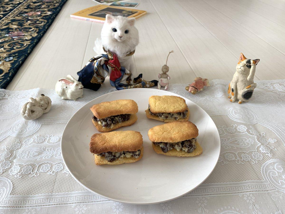 test ツイッターメディア - 今日のお菓子 レーズンバターサンド  ーー上質な一日は、一片のレーズンバターサンドから始まる。  皆大好き、レーズンバターサンドの食べ放題ですよ〜♪  六花亭さんのマルセイバターサンドは世界で一番美味しい食べ物の一つだと思っております。  しっとりさっくりクッキー生地も上手く焼けました。 https://t.co/HbaVvkGjsP
