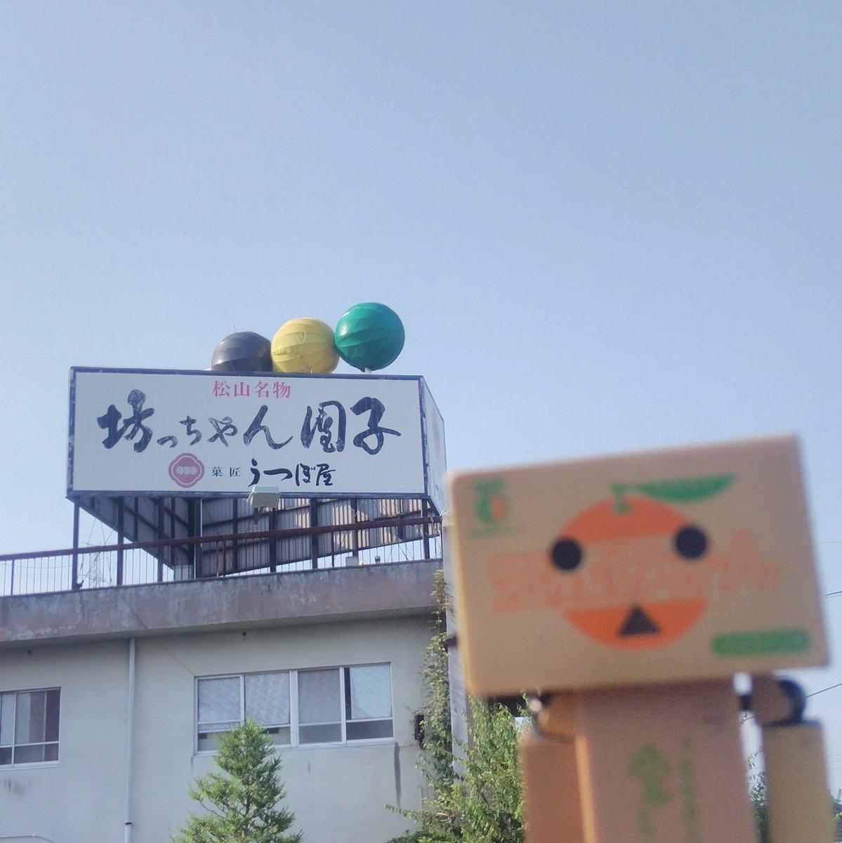 test ツイッターメディア - うつぼ屋の巨大坊っちゃん団子を間近で撮影しました。 敷地内には入ってません。  #うつぼ屋 #松山市 #ダンボー https://t.co/BOCeaBY47h