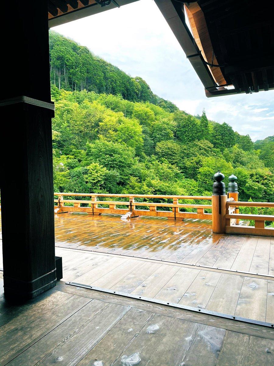 test ツイッターメディア - 今日梅雨明けかぁ🌻という事は梅雨明け直前の京都ぶらり旅だったわけだ。おいでませ京都。行き当たりばったりなぶらぶらり。決断力と行動力と心の余裕がないとあきまへんどすえ。経験値を積むしかない。どこ行っても買えるっしょって、結局買いそびれた京ばあむ。お漬物がやっぱりどうしても食べたい。 https://t.co/HMdFPO55xt
