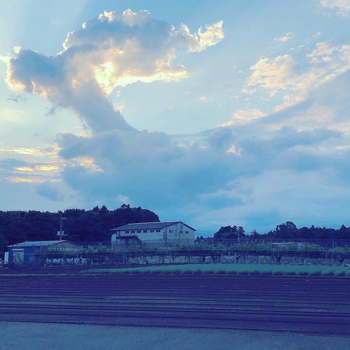 test ツイッターメディア - いただきました🥖♡スヌーピーとコラボでステッカー付き🐕🐾パッケージの絵柄が全部違う💕💗💕&スヌーピーな雲°ʚ☁️ɞ°  #スヌーピー #snoopy #ラスク #グーテデロワ #gouterderoi #空 #雲 #sky #clouds #お疲れ様でした #お菓子 #rusk #可愛い https://t.co/yjXaZJ0oTx