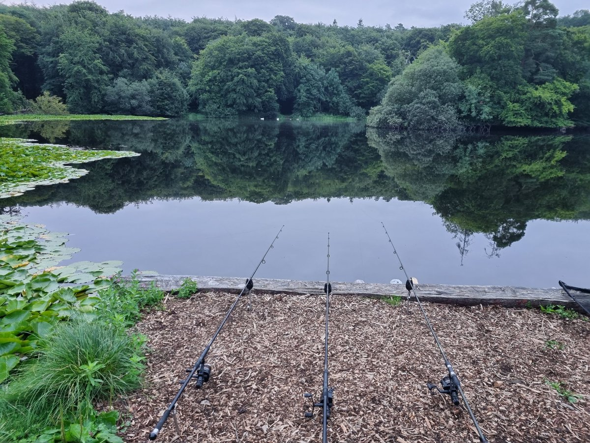 Watching and hoping great start to a day off #tight<b>Line</b>s #carpfishing https://t.co/JrxDqGJMOc