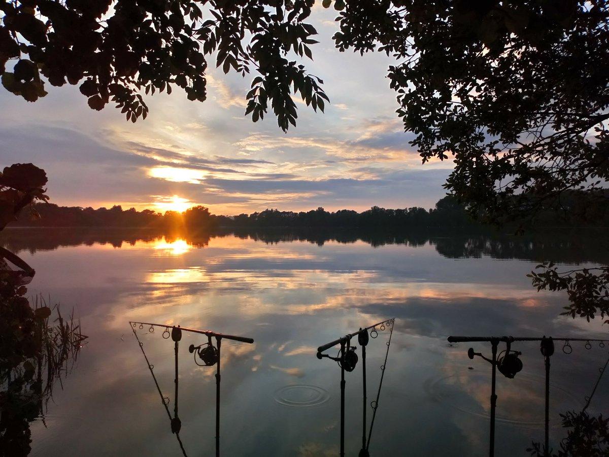 Beautiful Evening!! 🎣  Happy Smurf ☺  #LivingTheDream #PositiveVibes #CarpFishing https://t.co/