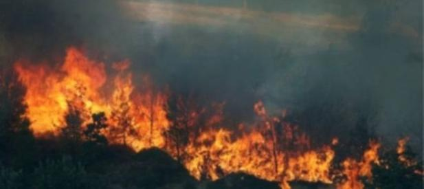 test Twitter Media - Torre del Greco. Parco del #Vesuvio a Fuoco  per ulteriori info clicca qui https://t.co/w03YWJ6BUW #Incendio #TorreDelGreco #VigiliDelFuoco #Attualità #Cronaca #Territorio https://t.co/EAqufCLAN4