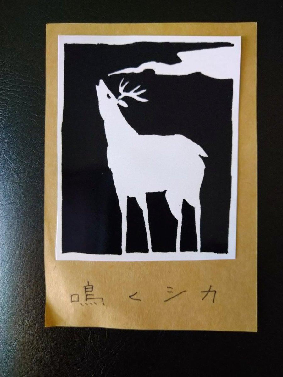 """test ツイッターメディア - 部屋の掃除して、やっと見つけた👍  去年の3月に、知床のビジターセンターで買った鹿のステッカー。  中標津町出身のイラストレータ、坂口つくしさんの絵。  haglofsのザック """"Katla 35""""に貼ろう✨  #ステッカー #鹿 #鳴く鹿 #坂口つくし #知床 #haglofs #katla35 https://t.co/uv26JB9bvp"""