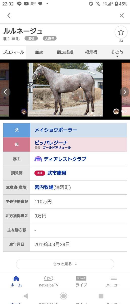 test ツイッターメディア - @shahushahusan 東京競馬場埋めるのが先やでそれまでに実家行っとこ! https://t.co/kHGGCtrd7k