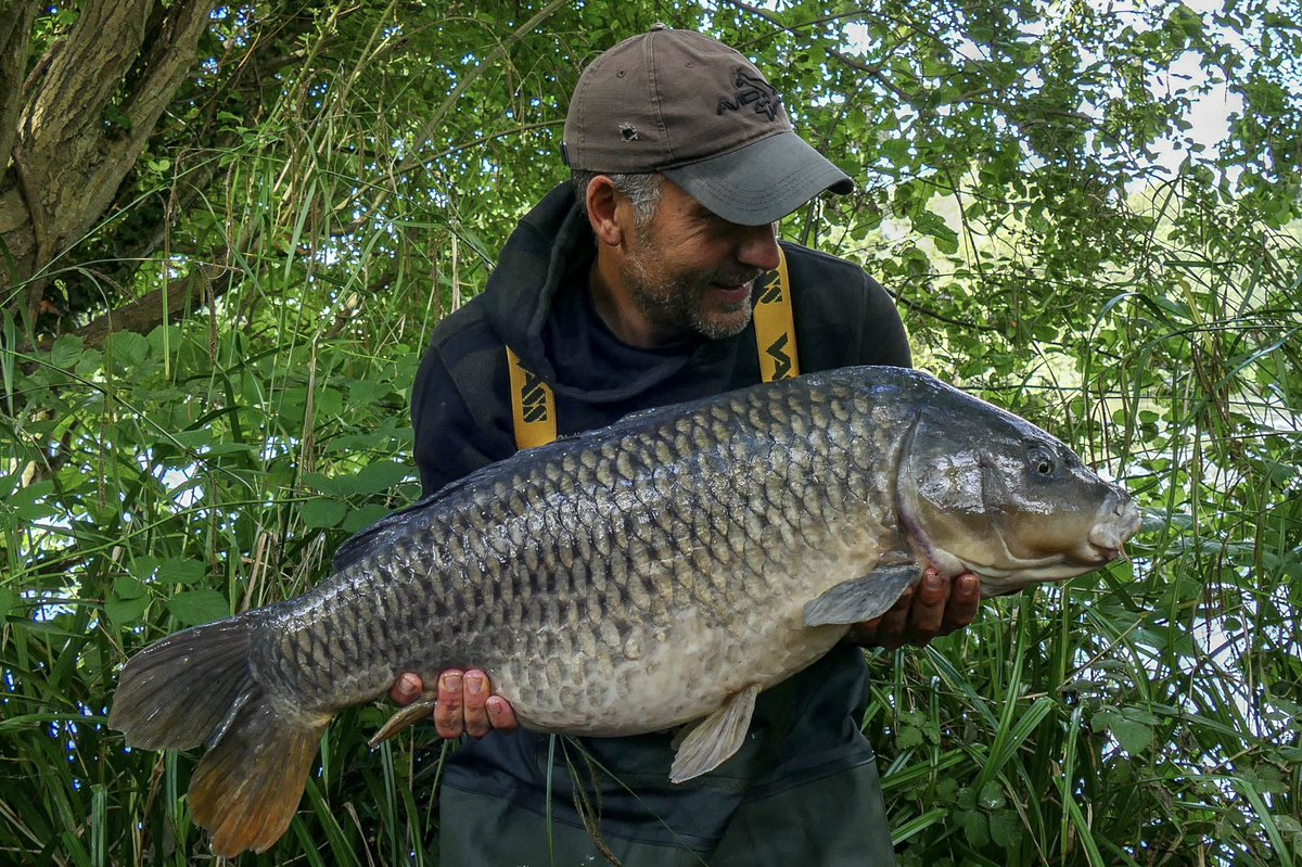 An old Yateley common known as Chubby Chops on the SLK & Avid end tackle 🙌🏴�