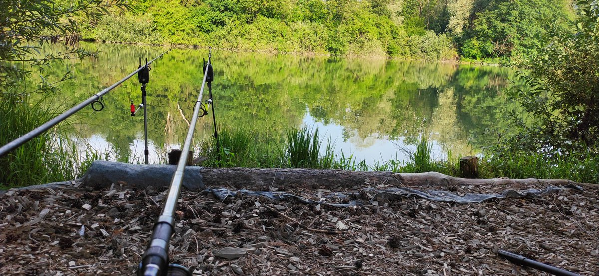 Finally!!!! Guys wish me luck 💪💪💪  #carp #carpfishing #fishing #fishinglife #angling #ribol