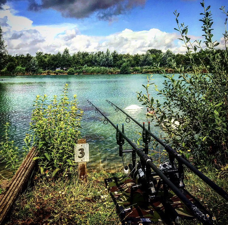 That rod shot 📸📸🎣👌 #<b>Shimano</b> #<b>Shimano</b>reels #corebaits #fishing #carp #carpf