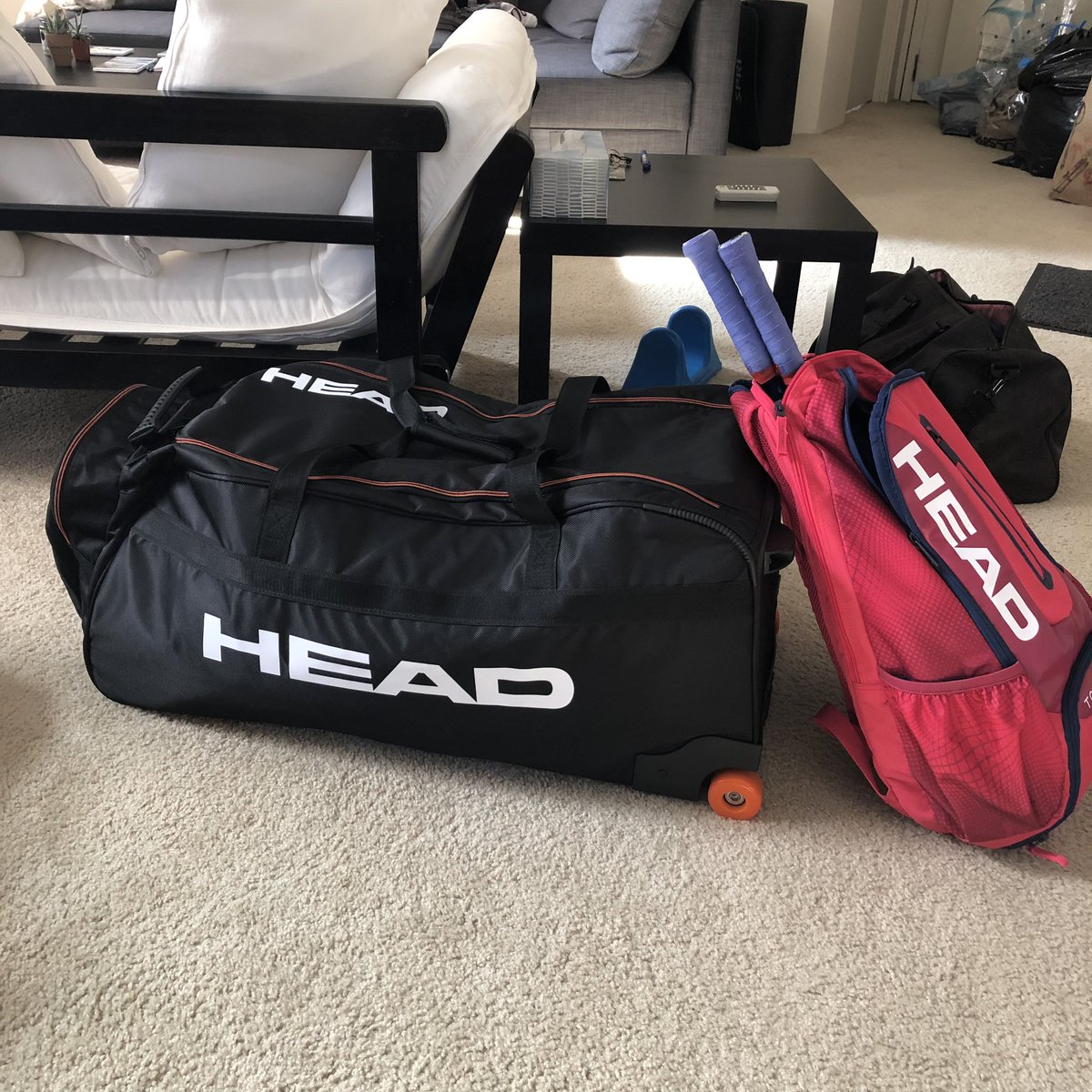 test Twitter Media - Locked & loaded for the PanAmerican Games!! Off to Lima & traveling in style thanks to the best! @head_squash 🙌🏽🙌🏽💪🏽💪🏽🇺🇸🇺🇸 #HeadSquash #TeamHead #TeamUSA #Lima2019  @TeamUSA @USSQUASH @Lima2019Games https://t.co/UZ1UqOFiGl