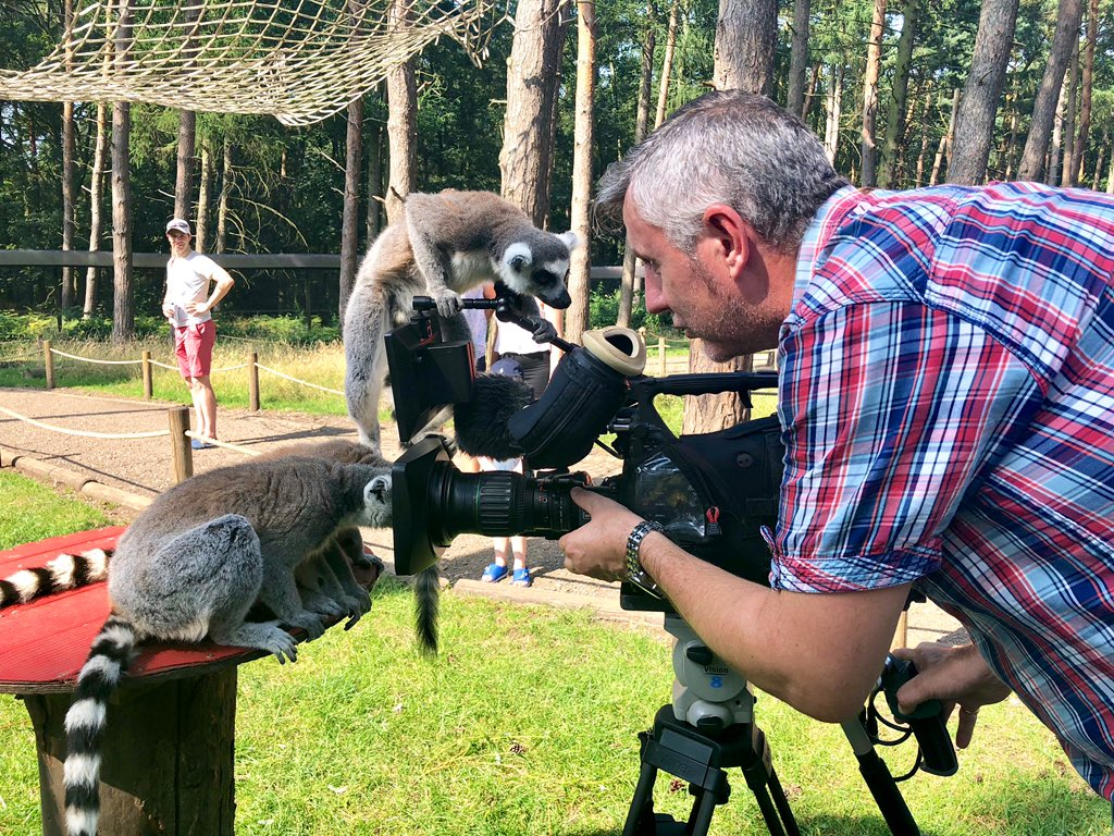 test Twitter Media - Tune in at 6 on @itvcalendar to watch Jon Hill reporting from @YorkshireWP about the hot weather, if our cameraman can get his camera back! https://t.co/4p0oDeGXWX