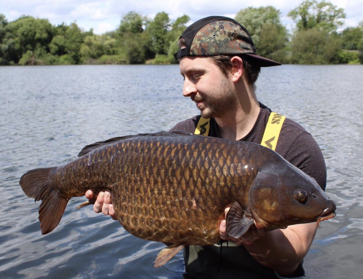 And look at this cracking common from Chris Hawkins.... #carpfishing #<b>Bigcarp</b> #commoncarp htt