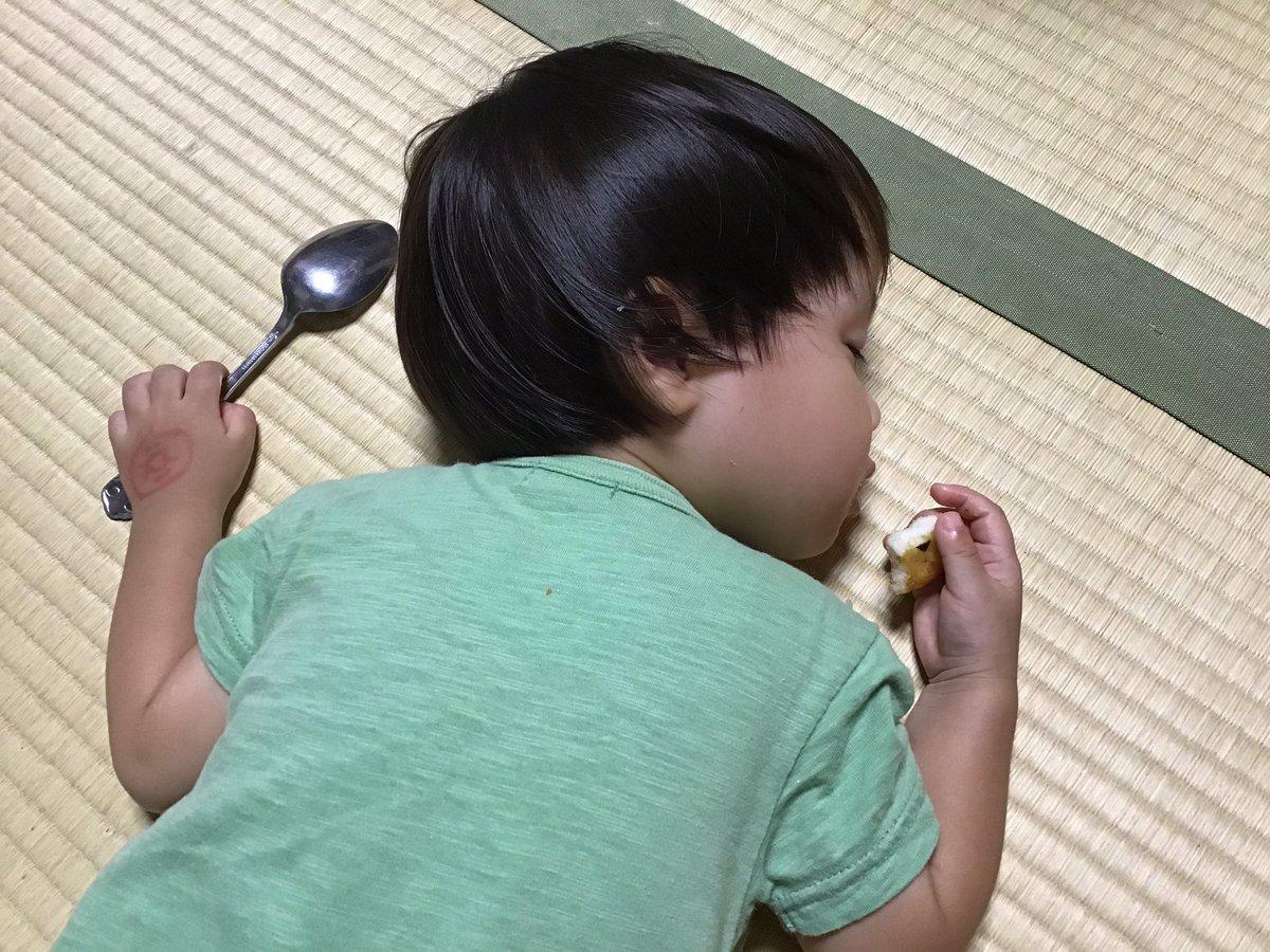 test ツイッターメディア - 小倉山荘を食べながら力尽きる息子氏( ˘ω˘ ) https://t.co/XZTGT0Oryx