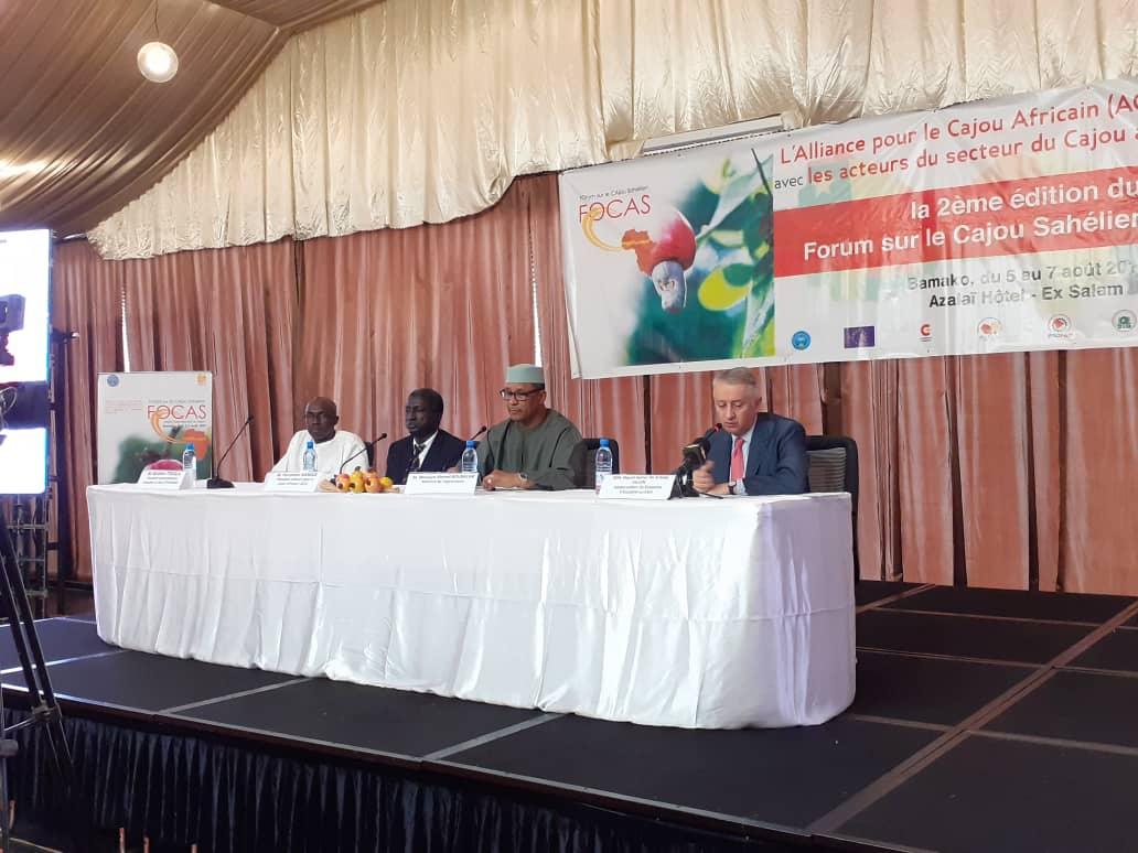 test Twitter Media - 🤝👩🏾🌾 Le ministre d'#agriculture du #Mali Moulaye Ahmed Boubacar et l'ambassadeur d'#Espagne au #Mali et au #BurkinaFaso Miguel Gómez de Aranda ont participé à la 2ème édition du Forum sur le #Cajou sahélien #FOCAS qui a eu lieu à Bamako.  #anacarde #Sahel #agricultura #anacardo https://t.co/2823QLfWfc