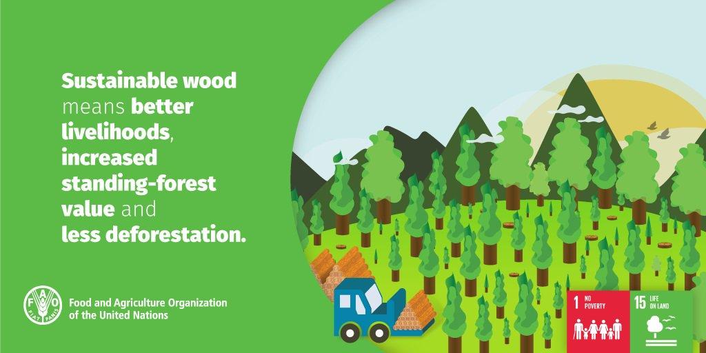 Sustainable wood=better livelihoods, increased standing-forest value & less deforestation #SW4SW #SDG1 #SDG15 https://t.co/BZ4MEyCLc1