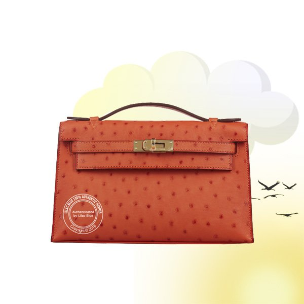 test Twitter Media - #Hermes #Kelly 22cm Tangerine Mini Pochette Ostrich GHW  https://t.co/toUFMREb1d  #HermesHandBags #HermesLondon #LilacBlueLondon #HermesSummer  For more information please call on +44 845 224 8876 or email info@lilacblue.com https://t.co/uSstuC3tAY