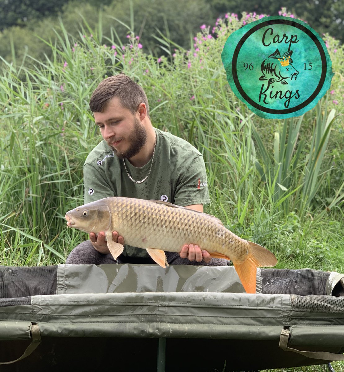 Lovely <b>Common Carp</b> #carpkings #carp #carpy #carpfishing https://t.co/absYpWD8KP