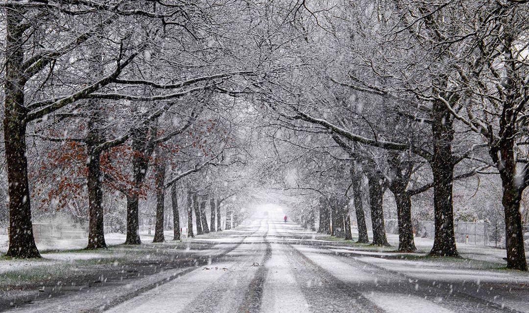 test Twitter Media - There's nothing quite like capturing the beauty of fresh snowfall (via IG/e.kadri). https://t.co/mzMrbwAgvM