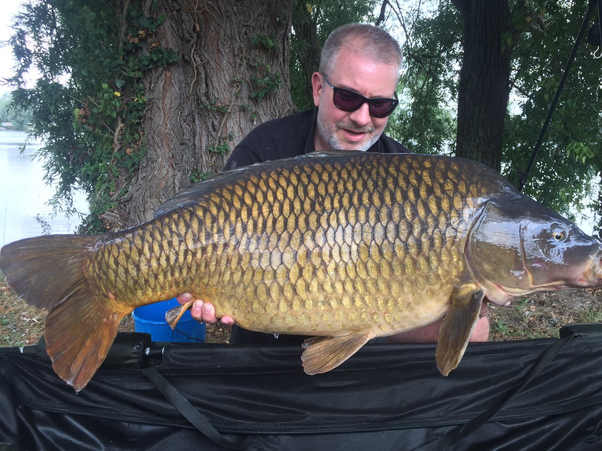 Scale perfect, fantastic proportions (just soooo wide) and <b>50lb</b>+... happy days!! #carpfishing