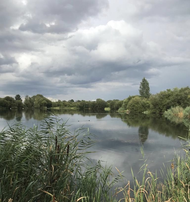 @stgeorgeslake looking stormy... #carpfishing #<b>Bigcarp</b> https://t.co/myd8fA3cBE