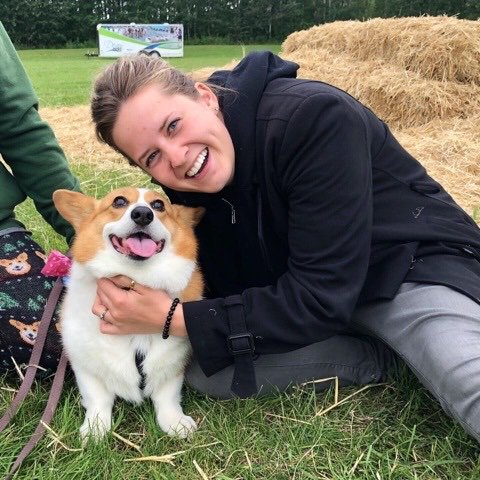Did you know this weekend Edmonton had its first ever YEG CORGI BEACH DAY?!!?  Literally over 100 corgis gathered in Voyageur Park in Devon and it was PAW-SOME!!!  I went down & met some of the floofs myself - this is Queenie!!!!  - @hunterathome #yeg #corgi #floof https://t.co/E46DEOpJhI