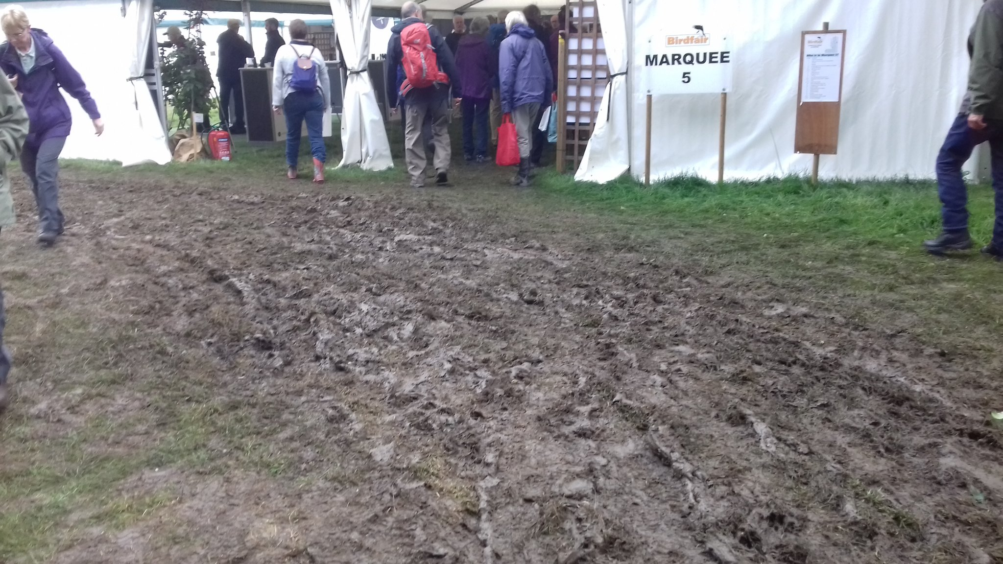 #Birdfair really is the 'Birdwatching Glastonbury! Hope it was less of a slippery mudbath today.... https://t.co/oI6yYQvIxH