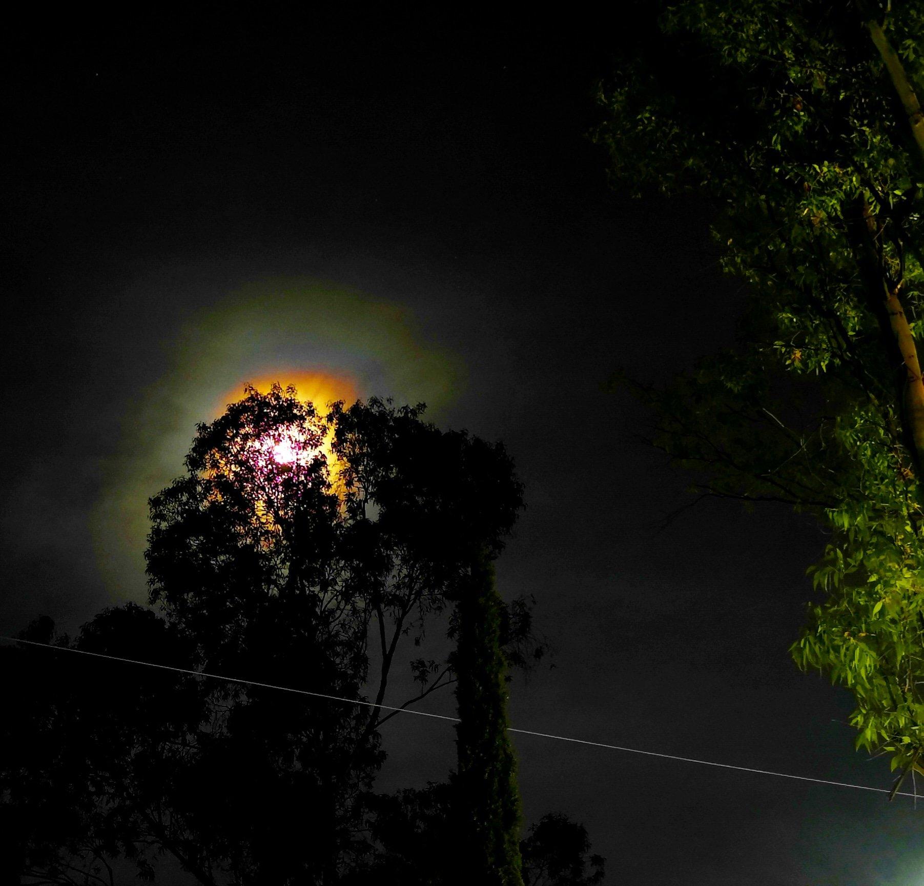 RT @Ing_CiroSan: #Hoy #Luna Roja en #Apogeo desde #Puebla #Mexico @El_Universo_Hoy @astropuebla @SandraTvazteca @danoga @Amo_a_Puebla @turisteandomexi @EltoperMx @CICPue https://t.co/VAMn8rPitM