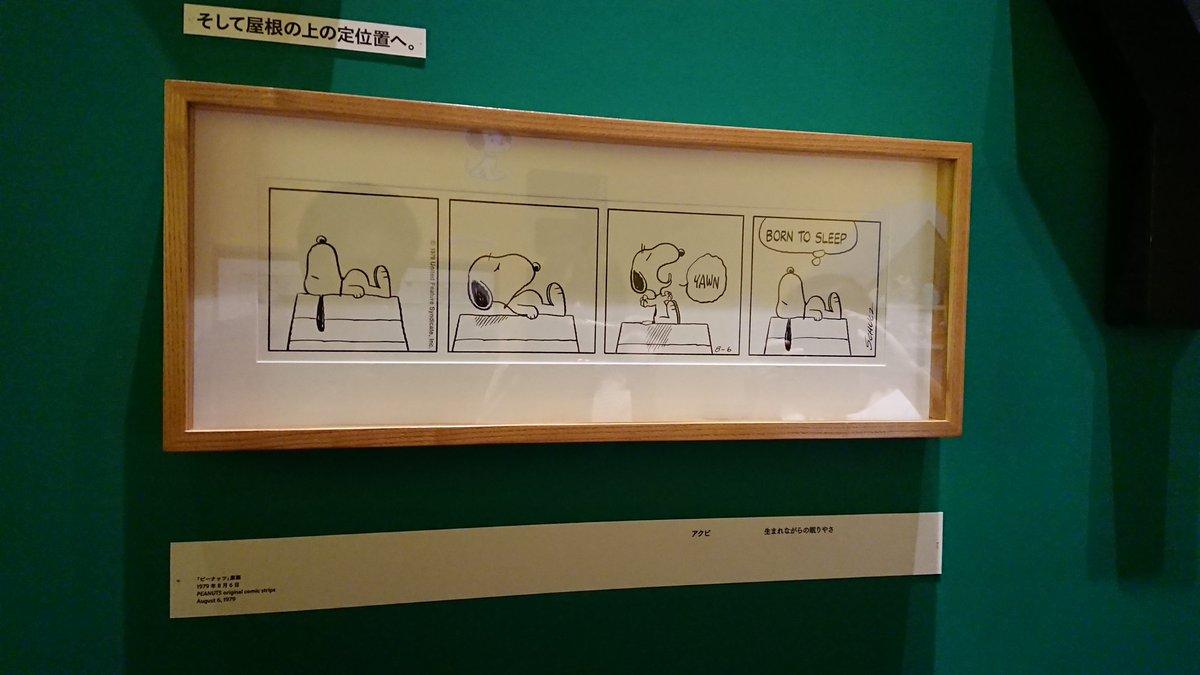 test ツイッターメディア - この間スヌーピーミュージアム行ってきたけど、すごく良かった!!!⤴️⤴️  もう期間ないけど、いってみてほしい https://t.co/julhkxsb94