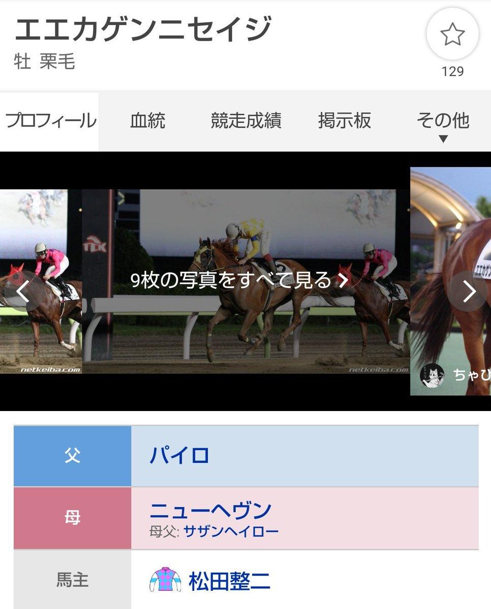 test ツイッターメディア - 大井競馬場「エエカゲンニセイジ」 https://t.co/E9fWA8Qbrh