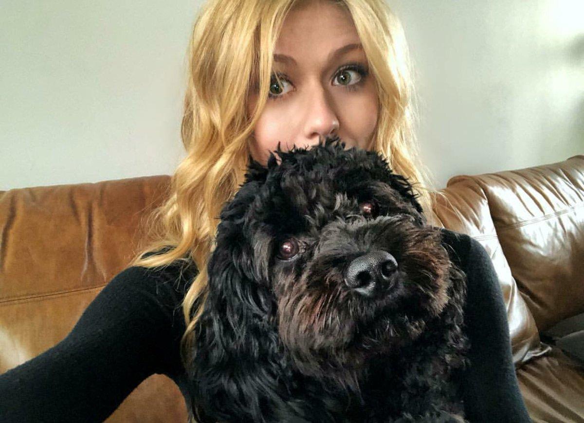 RT @buhunter9: Queen Family with dogs 🐶 @Kat_McNamara @StephenAmell @benlewishere @emilybett #Arrow https://t.co/KzEPpRKpzl