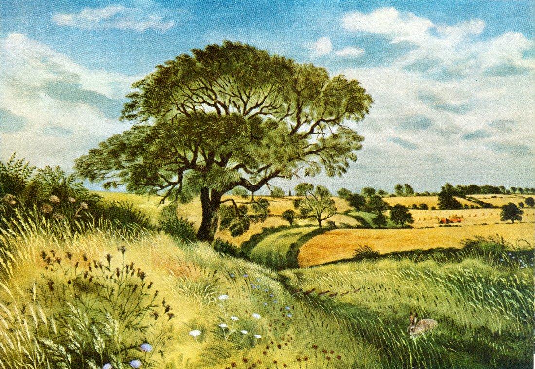 Sewstern Lane, Leicestershire-Lincolnshire Border, #England ,David Gentleman. https://t.co/9FgKiLb0bU