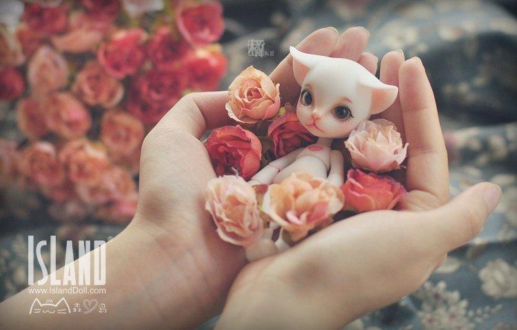test ツイッターメディア - 【即納情報】Island Dollより、すぐにお迎えできる個性豊かなドール達が大勢やってきました✨ 手乗りサイズの白猫さんやモコモコの羊さんなどの人気者をはじめ、変わり者のメジェド様やハロウィン仕様の男の子も。ぜひご覧下さい♫ PC➡️https://t.co/XISOgHLbbR スマホ➡️https://t.co/3P2fk4yIaY https://t.co/JCfSyNrGBU