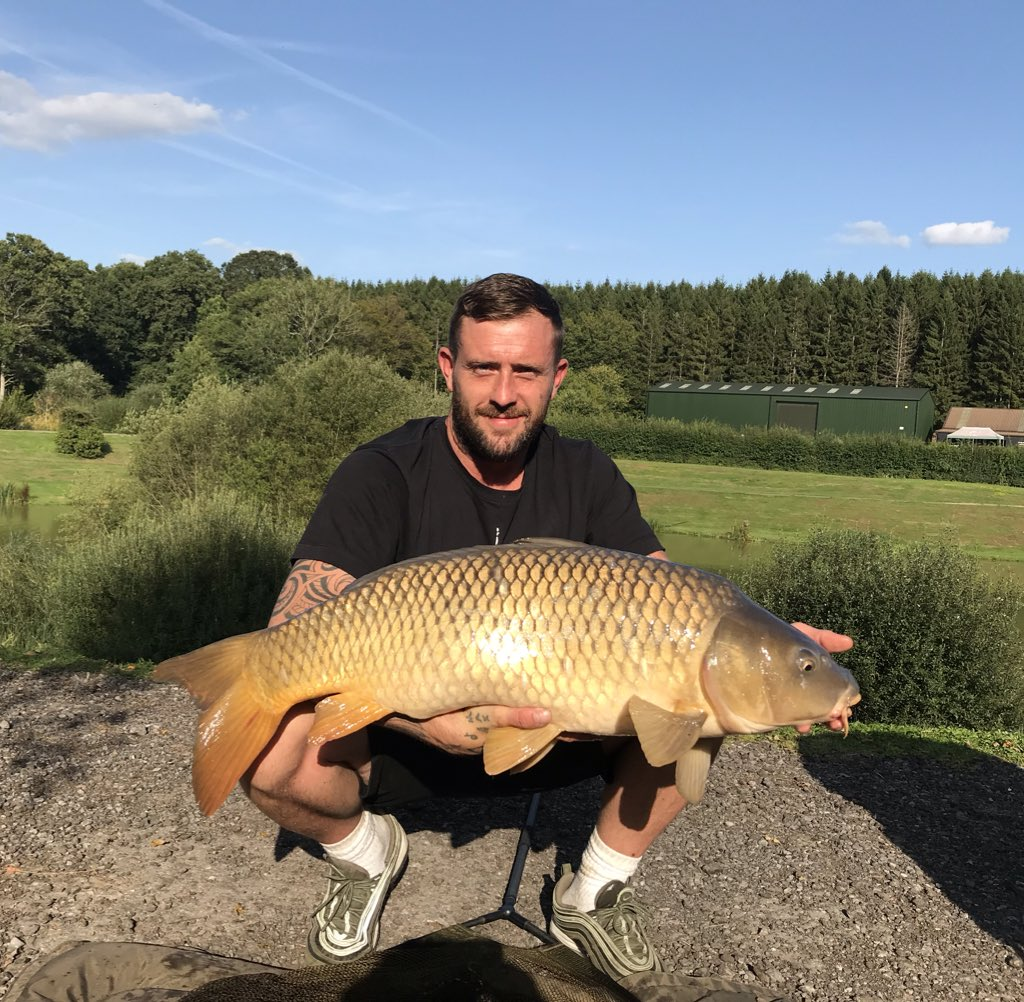 Boshhhhhh and another one, 31lb <b>Common Carp</b> 😊🎣 #Carpfishing https://t.co/7CP5oebCfG