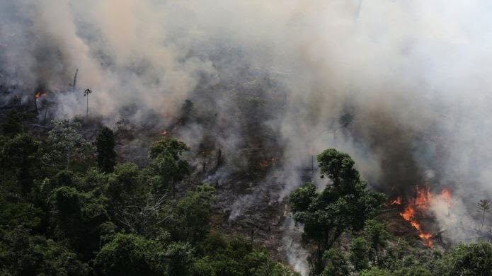 Every time I try to google info about the massive Amazon Rainforest Fire, I get results for the Amazon Fire stick. And that's ridiculous.  So I'm making a thread with information about how devastating this is and why we should ALL be concerned #AmazonRainforest (📷: @Reuters)
