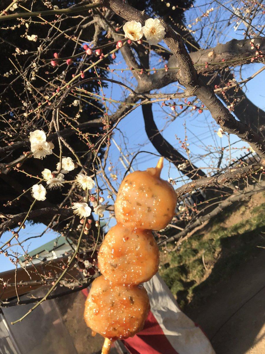 test ツイッターメディア - 水戸の梅まつりで食べた味噌だれだんご(さくら🌸) 桜味のだんごに味噌だれで美味しかったなー😆 https://t.co/G4ALIYOpnj