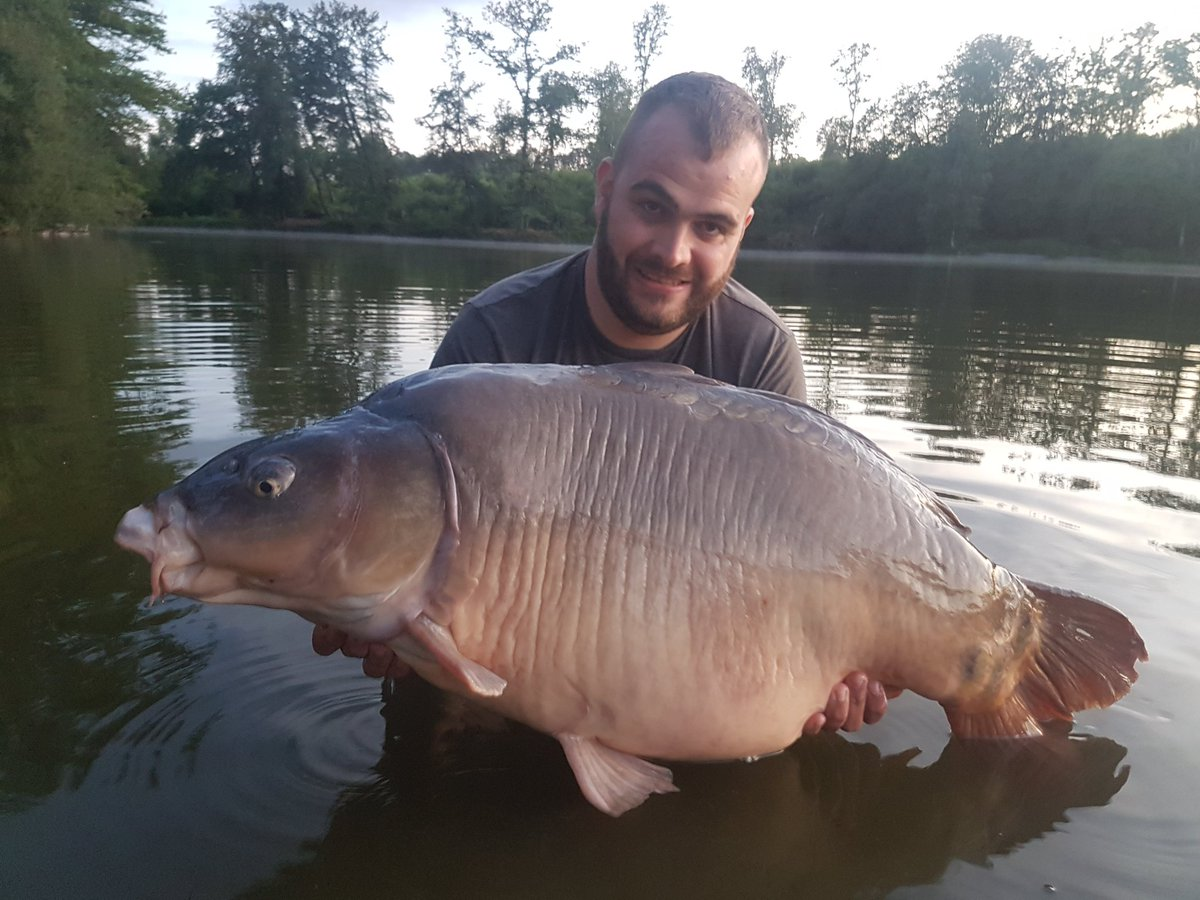 #france #carpfishing #<b>50lb</b> https://t.co/s1WojRlfWU