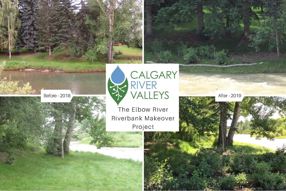 test Twitter Media - Yesterday was a successful open house style tour of our Phase 1 Riverbank Makeover site, albeit cut short due to the downpour in #yyc . Thx to all who came out to learn about riparian health & function, & the role for H2O quality & quantity https://t.co/hgkVPR3SJ0 https://t.co/7sNpxkROGk