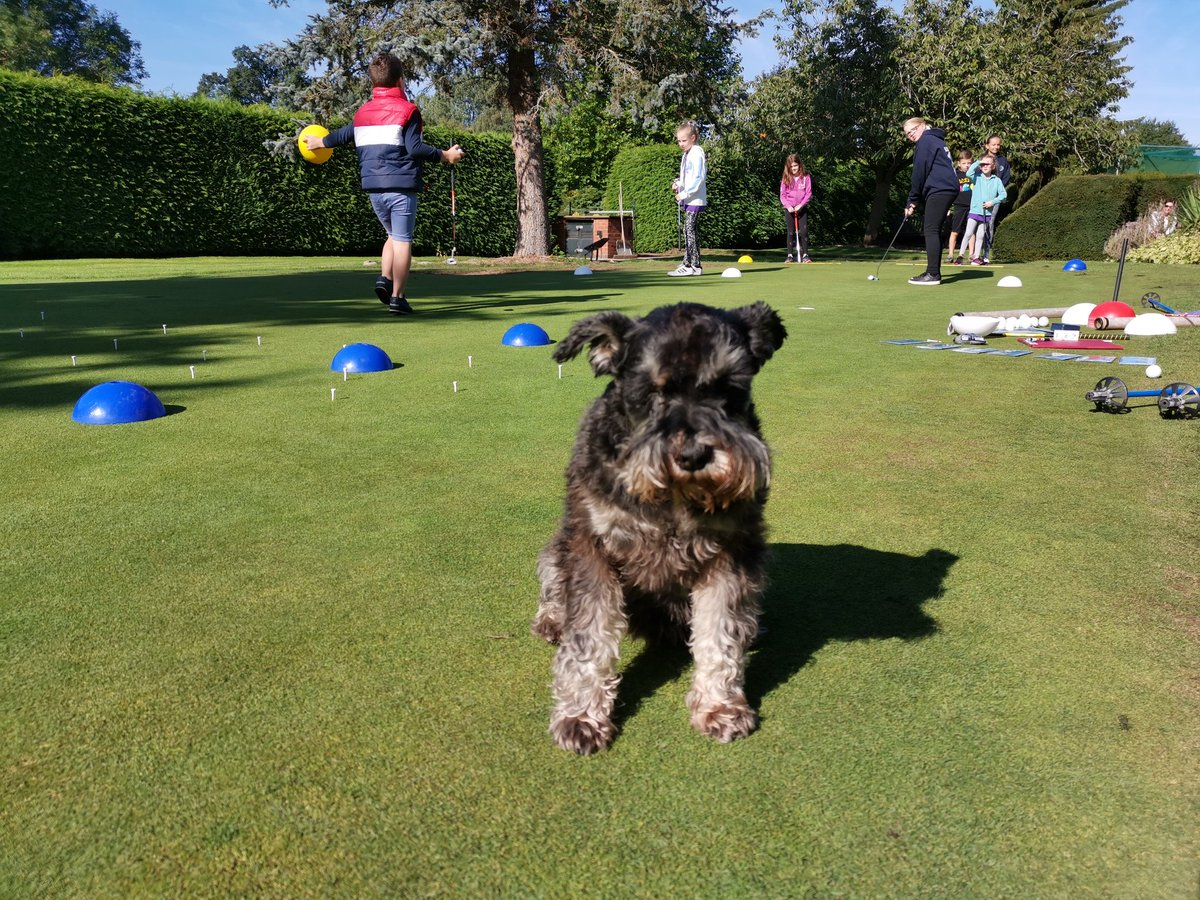 test Twitter Media - Lovely sunny morning for our IPGC Juniors. Back to it with @GolfRootsHQ Junior Golf Passport with the help of Millie the dog.  Huge well done to James on winning the #SkillsForLife medal this week.! 👏🏅 #growthegame #girlsgolfrocks #juniorgolfpassport @EnglandGolf @EGWomensGolf https://t.co/HmOT1sweyV