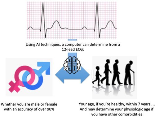 test Twitter Media - Age and Sex Estimation Using #ArtificialIntelligence From Standard 12-Lead ECGs  by @zachia5 @drpaulfriedman@noseworthypeter @American_Heart    Go to     #AI #IoT #BigData #MachineLearning #ML #MI    Cc:  ... https://t.co/WkFzVUGysr https://t.co/IzckUoMao6 https://t.co/fNkHX8tY2U