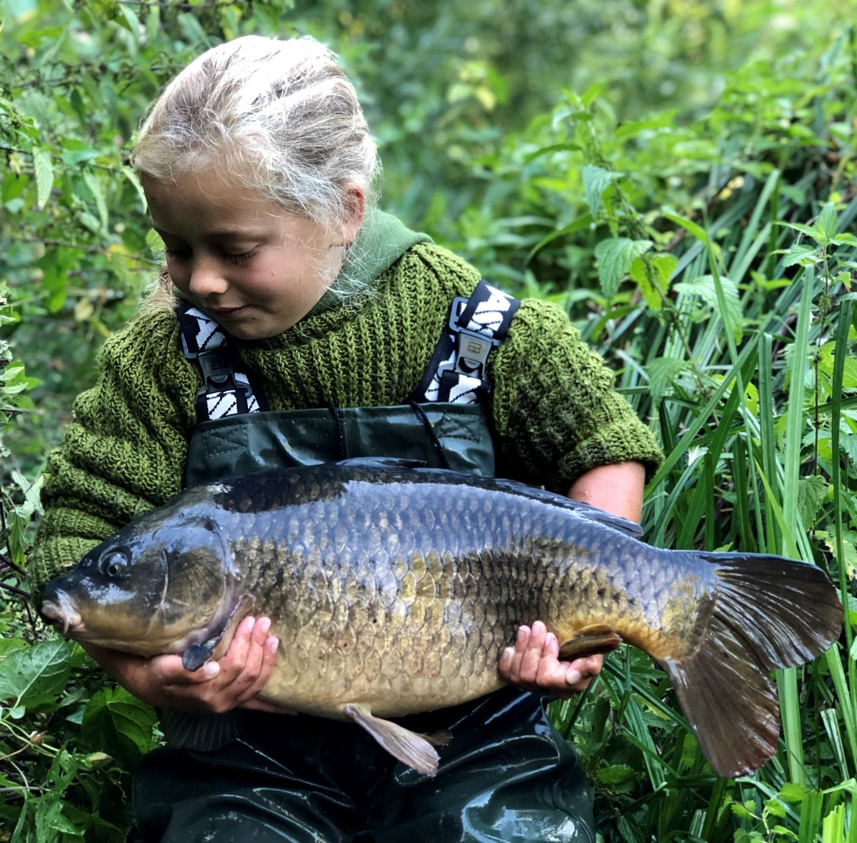 Sophie's river common caught Sunday morning, a <b>Beau</b>tiful little carp. Well done Sophie. #carp