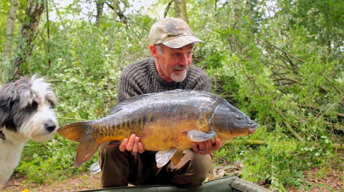 Something for the weekend.... Dave Lane's <b>Latest</b> carp vlog!!  --> https://t.co/tm6jGyO7hx