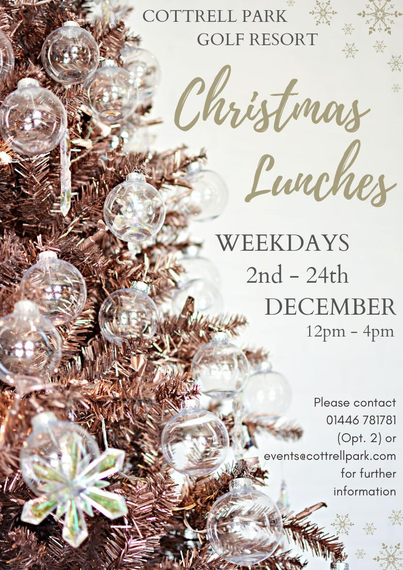 test Twitter Media - IT'S CHRISTMAS!🎄🥂  Well maybe not quite yet..  However, it is time to start planning your festive functions! Join us for our Xmas Lunches Monday to Friday in December 🍽  For more info please contact our Events Team.  #christmas2019 #christmaslunches #festiveseason #xmaslunches https://t.co/FU56AaO6tG
