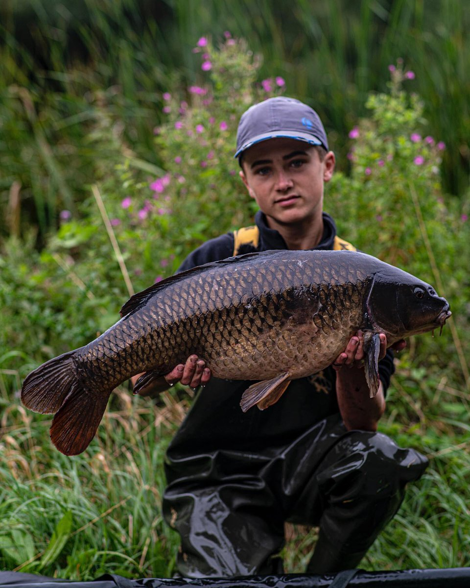 Lovely dark Common from recent trip to Stanwick Lakes for Otto. #carpfishing #vasswaders https://t.c