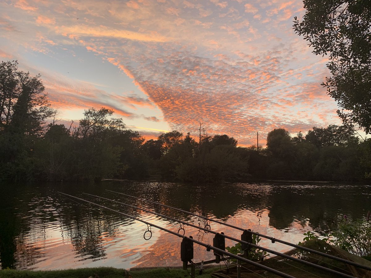 Beautiful evening to be out angling! #nofilterneeded #carpfishing #thatscarpy https://t.co/lv7OWMSmv