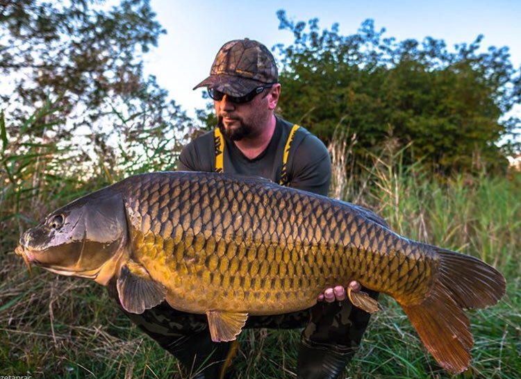 Another <b>Beau</b>ty for Victor Zeta Prac  @TheCARPbible   #Carp #CarpFishing #Fishing https://t.co