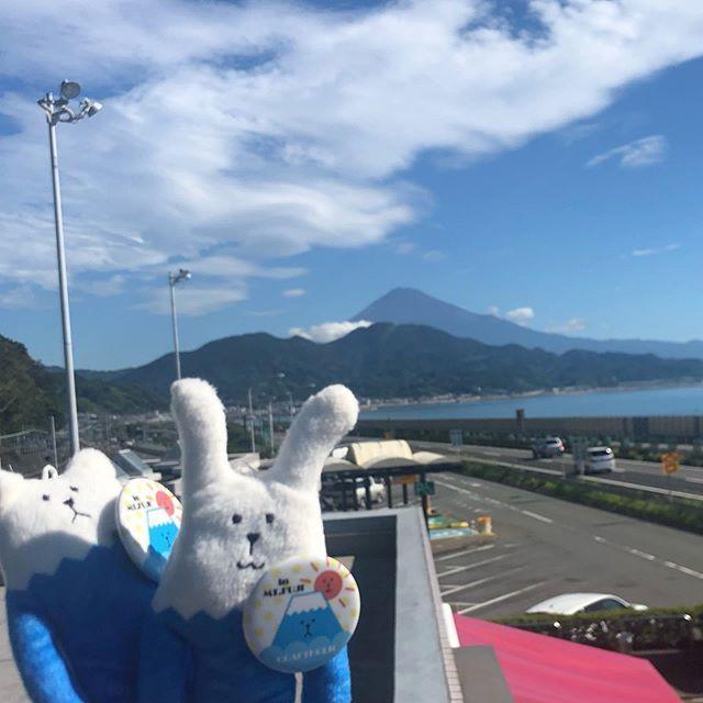 test ツイッターメディア - あっ、今日は富士山が見える! 近くに行けば、もっと大きく撮れるかな?  #craftholic #クラフトホリック  #いいねした人で気になった人フォロー  #ぬい撮り  #ご当地クラフトホリック  #ご当地クラフトホリックフォトコンテスト  #富士山 #富士山ホリック気になる https://t.co/dVi7jsESdj https://t.co/vAjCy06Qkl