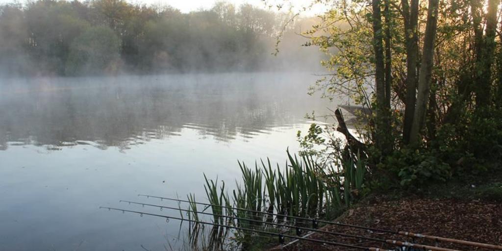 Who's got a view like this <b>Today</b>? #carpfishing #fishing #carp https://t.co/yPk4bROldP