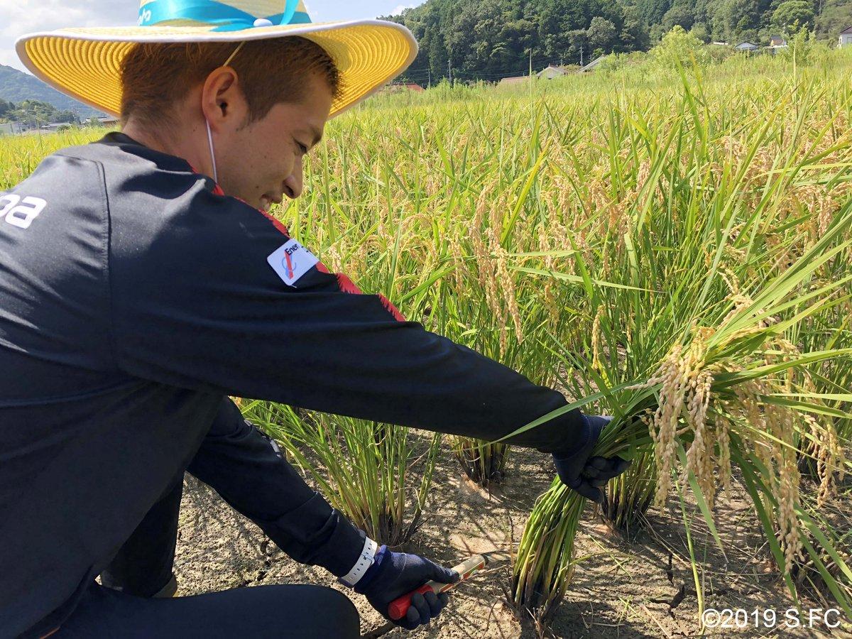 test ツイッターメディア - フレスタ様(@FRESTA_81)、JA全農様が主催の「サンフレッチェ応援米収穫体験」に森崎浩司アンバサダーが参加しました🌾 今年で3回目の稲刈りとなるアンバサダーは慣れた手つきでどんどん収穫していきます‼️ #sanfrecce https://t.co/JdojbSM8Ez