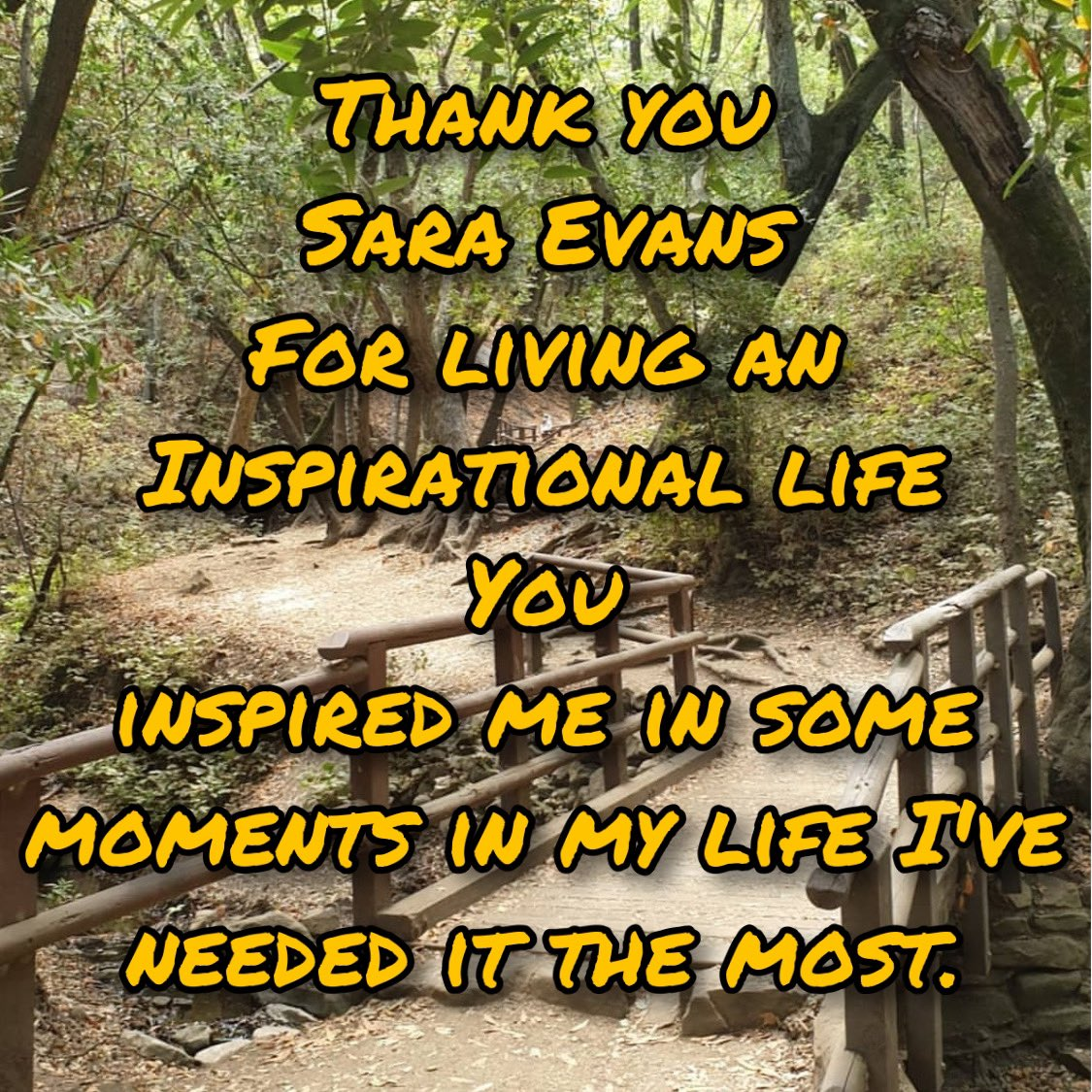 The inspiration to live life comes from so many. @saraevansmusic has been a source of survival for me. Her music has taught me that it's ok to not be ok right now but life has great things in store for me! Thank you Sara for inspiring me #SuicideIsNotTheAnswer #BeHereNow
